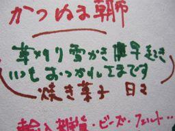 IMG_8337_256.JPG