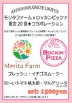 morita-outline.flyer.jpg